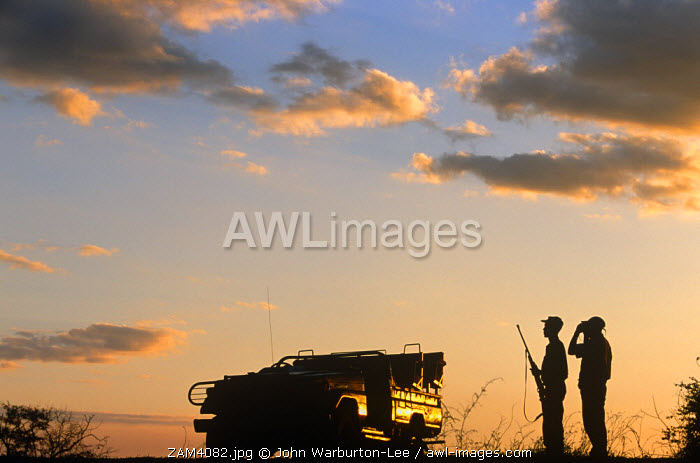 Zambia, South Luangwa National Park.  Bird watching at sunset while on a game viewing safari.