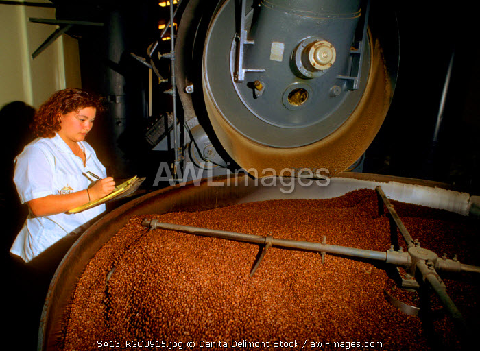 Costa Rica, San Jose, Alajuela, Coffee is roasted at La Meseta dry mill.