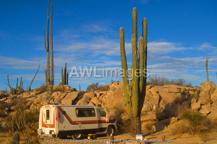 desert camping on the Baja California peninsula, Mexico