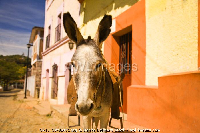 Copala Town, near Mazatlan, Sinaloa State, Mexico
