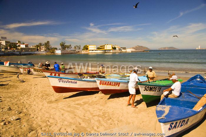 Fresh Catch at Olas Altas Blvd, Mazatlan, Sinaloa State, Mexico