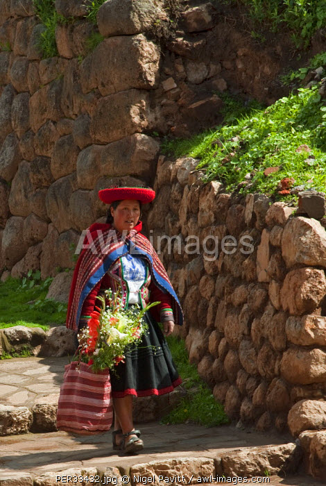 Peru, A woman in traditional Indian costume takes home a bunch of flowers from market on a path running alongside a massive Inca stone wall.