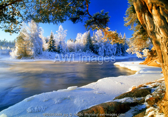 Dal River in Sweden in winter