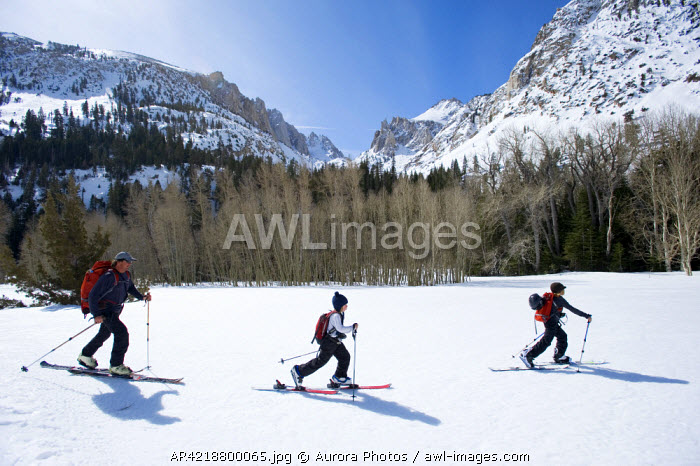 awl-images.com - USA / A father and his two sons skinning through the backcountry of California, USA