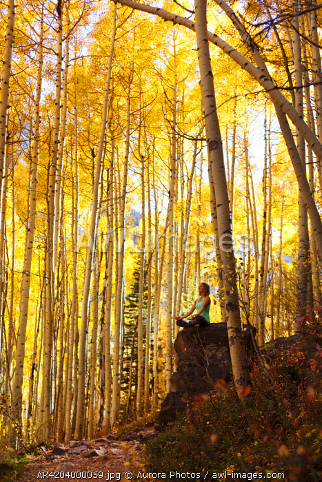 awl-images.com - USA / A young woman meditates peacefully on a rock in the midst of a sea of gold leaves