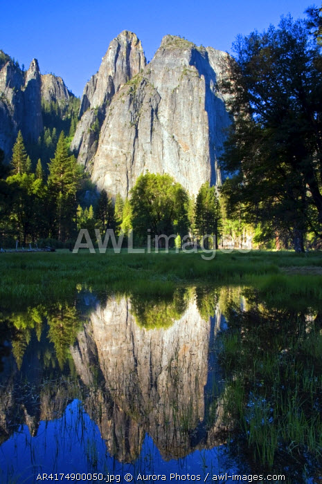 awl-images.com - USA / Cathedral Rocks are reflected in a pool of water in Yosemite National Park, California, USA