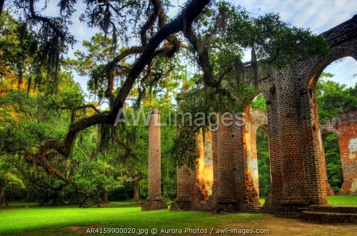 awl-images.com - USA / Morning light on the Old Sheldon Church Ruins in Yemassee, South Carolina, USA
