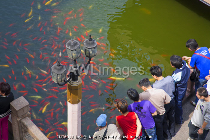 awl-images.com - China / China, Shanghai, Tourists look at carp in pond at Mid Lake Pavilion and Bridge of Nine Turnings