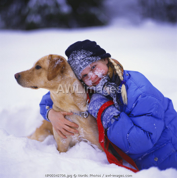 awl-images.com - Sweden / Girl and her dog in the snow,