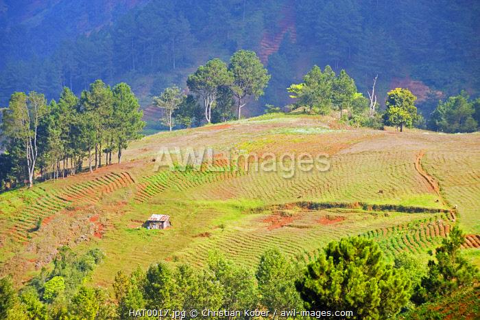 The Caribbean, Haiti, Port of Prince, farmland on Kenscoff mountains