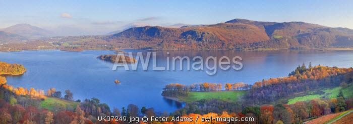 Derwent Water from Catbells, Lake District, Cumbria, Lake District, UK