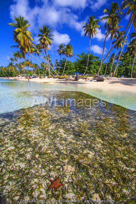 Dominican Republic, Samana Peninsula, Las Galleras, La Playita beach