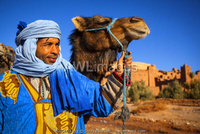 Camel Driver, Ait Benhaddou, Atlas Mountains, Morocco (MR)