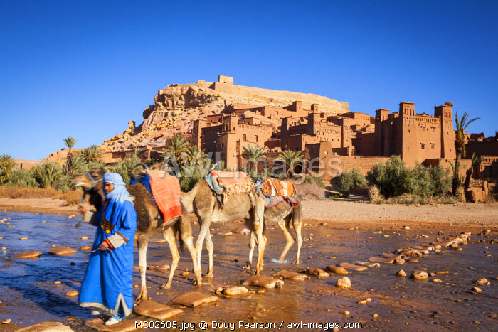 Camel Driver, Ait Benhaddou, Atlas Mountains, Morocco (MR)