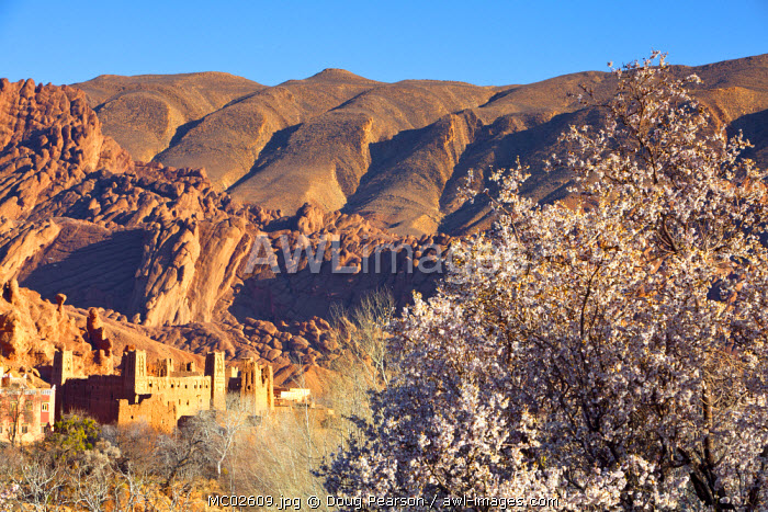 Ancient Kasbah's, Dades Gorge, Morocco