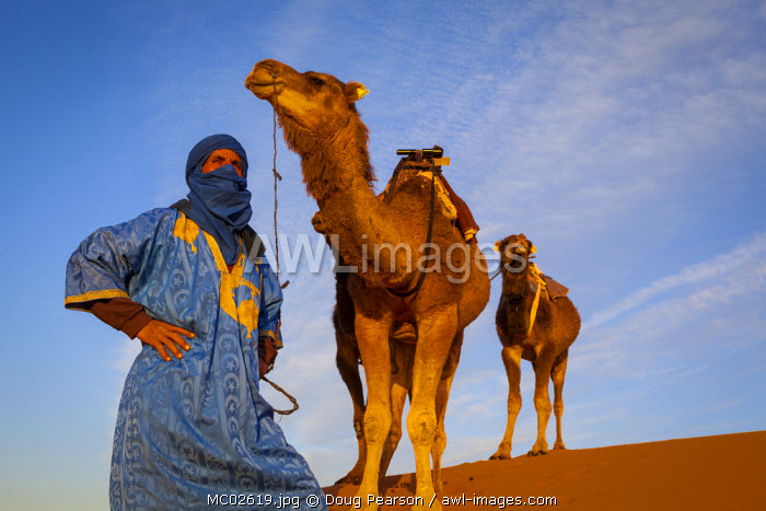 Camel Driver, Sahara Desert, Merzouga, Morocco, (MR)