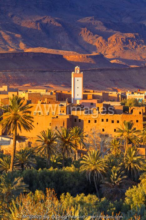 Tinerhir Kasbahs & Palmery illuminated at sunset, Tinghir, Morocco