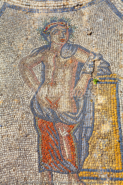 Mosaic from the House of Dionysus, Volubilis, Morocco