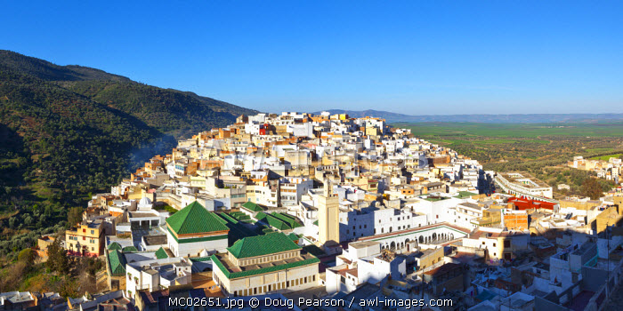 Elevated view over the historic hilltop town of Moulay Idriss, Morocco