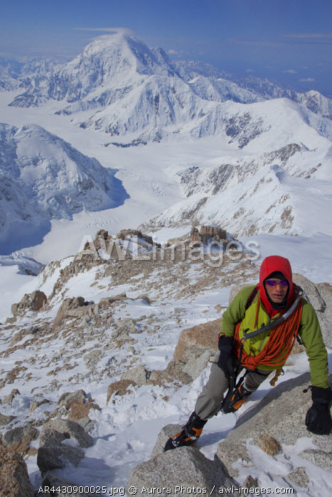awl-images.com - USA / Alaska, USA: High Up On The Upper West Rib On Denali, Alaska. Background Peak Of Mt Foraker In The Distance
