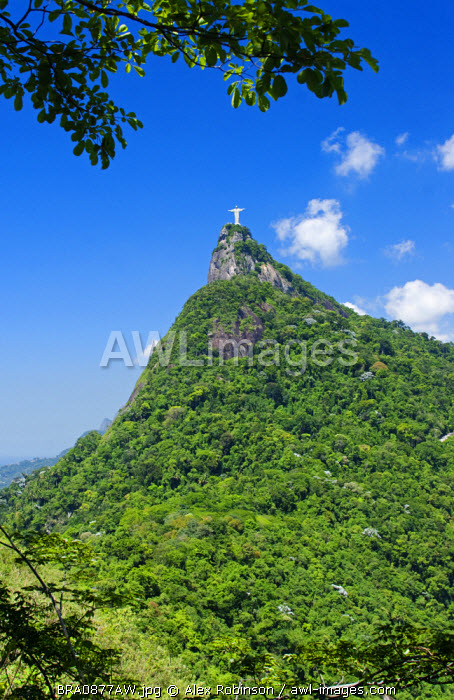 South America, Brazil, Rio de Janeiro state, Rio de Janeiro city, Corcovado mountain and Christ the Redeemeer, Cristo Redentor, showing rainforest setting