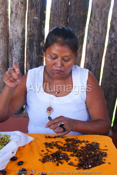 South America, Brazil, Miranda, a Terena indigenous woman making seed jewellery in the Pantanal