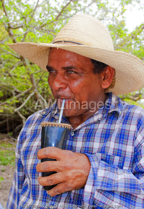 South America, Brazil, Mato Grosso do Sul, A pantaneiro ranch hand in a blue check shirt drinking mate from a cow horn chimarrao