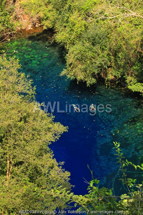 South America, Brazil, Mato Grosso do Sul, Bonito, snorkellers in the Lagoa Misteriosa cenote