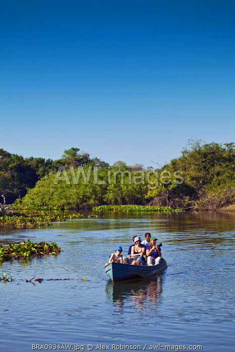 South America, Brazil, Mato Grosso do Sul,
