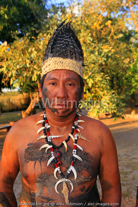 South America, Brazil, Miranda, Terena indigenous man from the Pantanal in a feather headdress wearing a bone and peccary tooth necklace