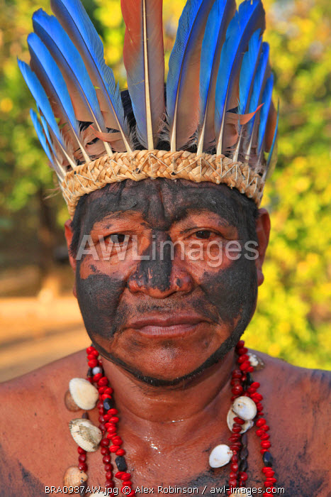 South America, Brazil, Miranda, Terena indigenous man from the Pantanal in a Macaw feather headdress