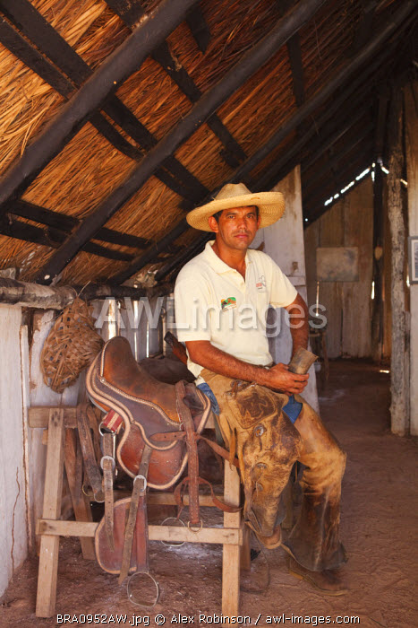 South America, Brazil, Mato Grosso do Sul, Fazenda 23 de Marco, pantaneiro ranch holding a horn cup and dressed in leather chaps sitting next to a hand-made leather saddle