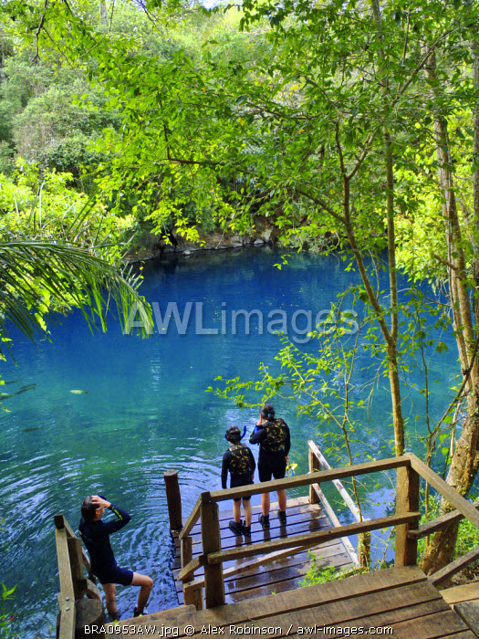 South America, Brazil, Mato Grosso do Sul, Bonito, a mother and son about to snorkel in the Lagoa Misteriosa cenote MR