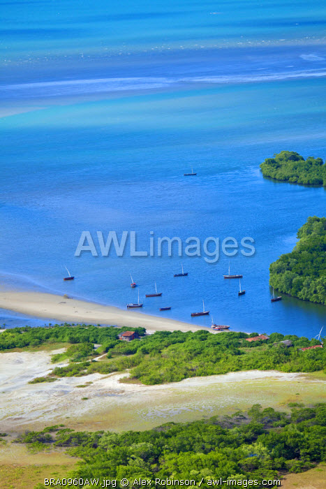 South America, Brazil, Ceara, Aerial shot of fishing boats in a mangrove-lined estuary near Fortaleza