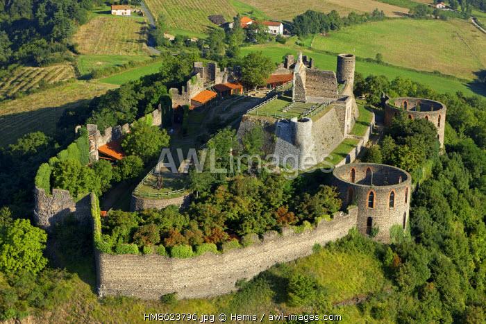 France, Loire, Marcilly le Chatel, St Anne Castle, vineyard Cotes du Forez (aerial view)