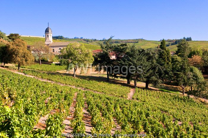 France, Rhone, Le Beaujolais, Chiroubles village
