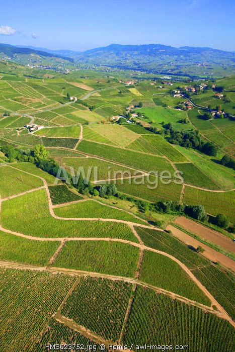 France, Rhone, Beaujolais, around Mont Brouilly, vine (aerial view)