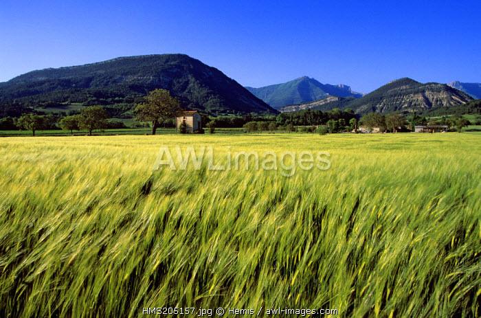 France, Drome, Drome Provencale, landscape near Die