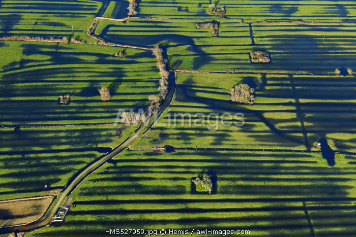 France, Manche, Audouville la Hubert, flooded marshes of Cotentin (aerial view)