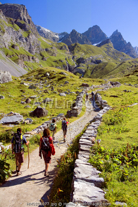 France, Savoie, Pralognan la Vanoise, GR55 path of the Col de la Vanoise, the Route du Sel et du Beaufort (Salt and Beaufort Road), hikers