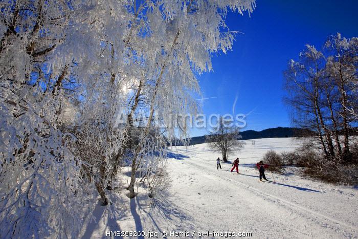 France, Savoie, La Feclaz, Massif des Bauges, Nordic ski aera of Grand Revard