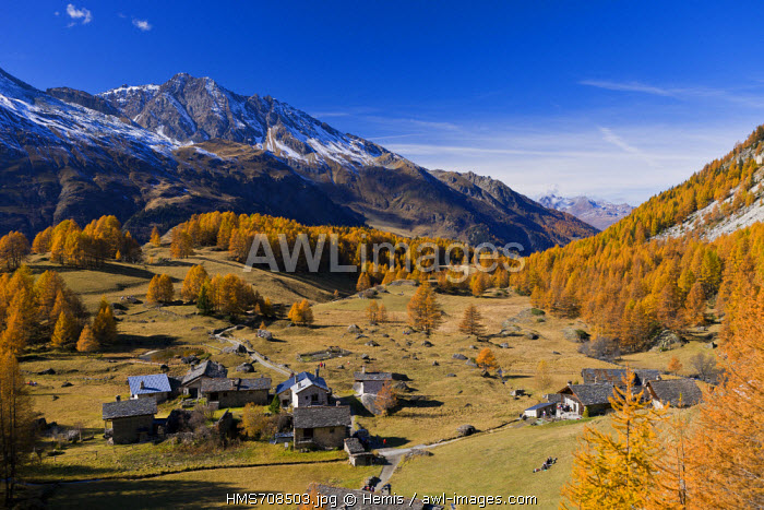 France, Savoie, Ste Foy Tarentaise, the hamlet of high mountain pasture of Monal with view of the Parc National de la Vanoise (National Park of Vanoise)