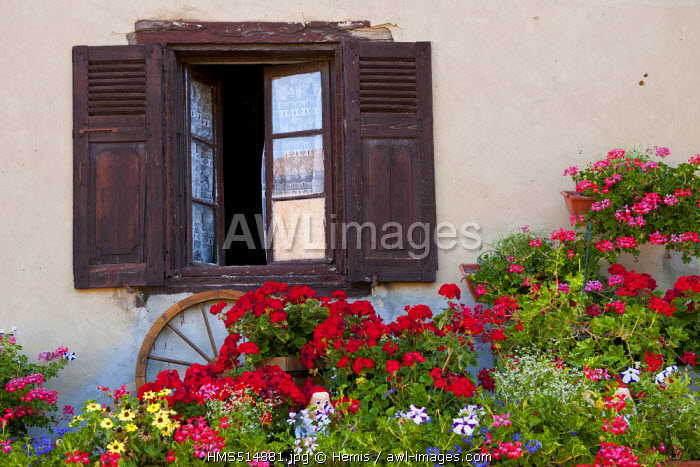 France, Isere, St Chef, flowered facade