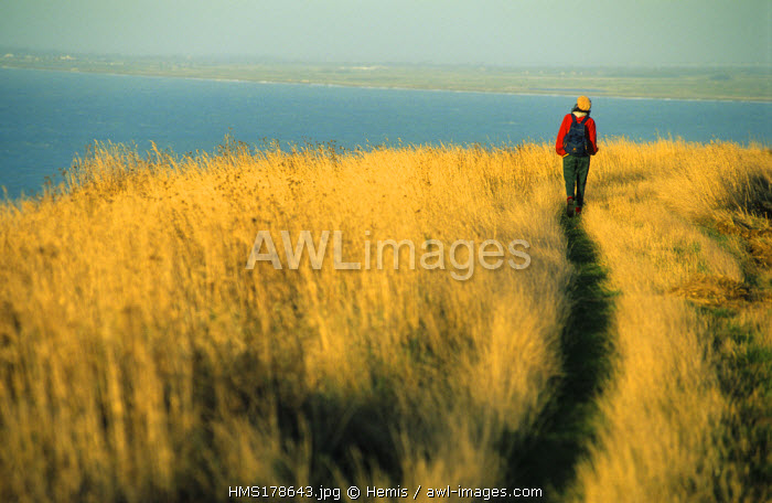 France, Seine Maritime, path over Cote d' Albatre Cliff