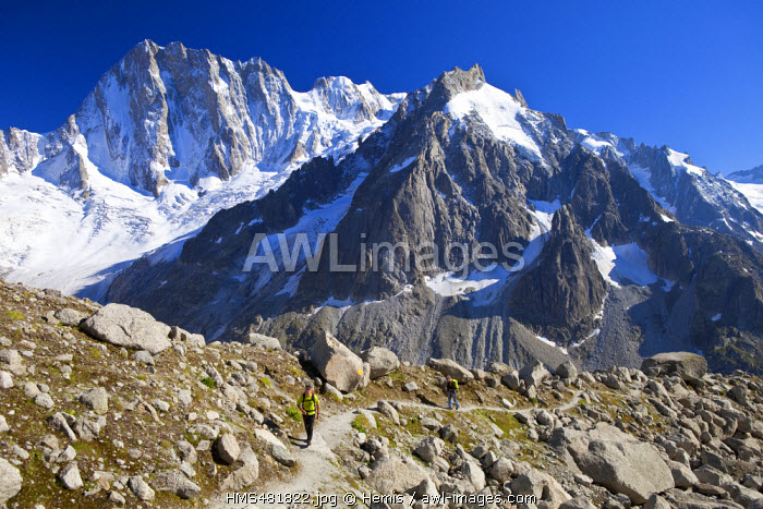France, Haute Savoie, Chamonix Mont Blanc, the path to reach Couvercle refuge with a view on the glacier of Leschaux and the Grandes Jorasses