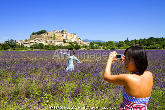 France, Drome, Drome provencale, Grignan, Asian tourists taking picture in a lavender field