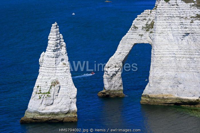 France, Seine Maritime, Pays de Caux, Cote d'Albatre, Etretat, the Aval Cliff and the Aiguille Creuse