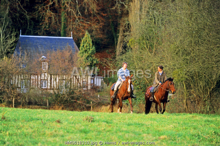 France, Eure, Brionne district, horse riding in the river Risle valley
