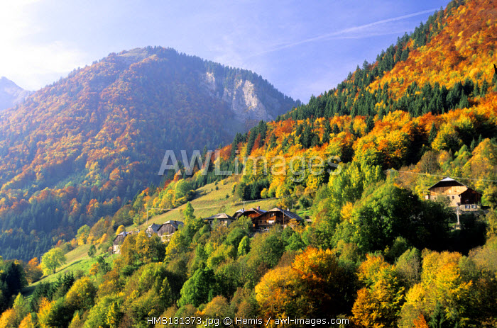 France, Haute Savoie, Taninges village, autumn