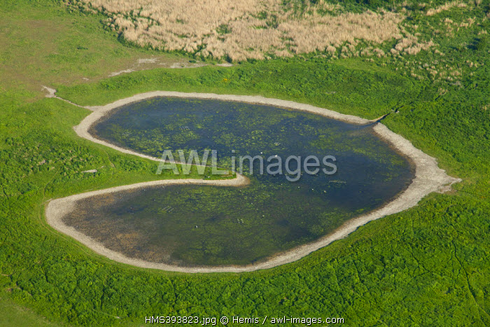 France, Seine Maritime, Le Havre, marsh at the mouth of the Seine River, nature reserve (aerial view)